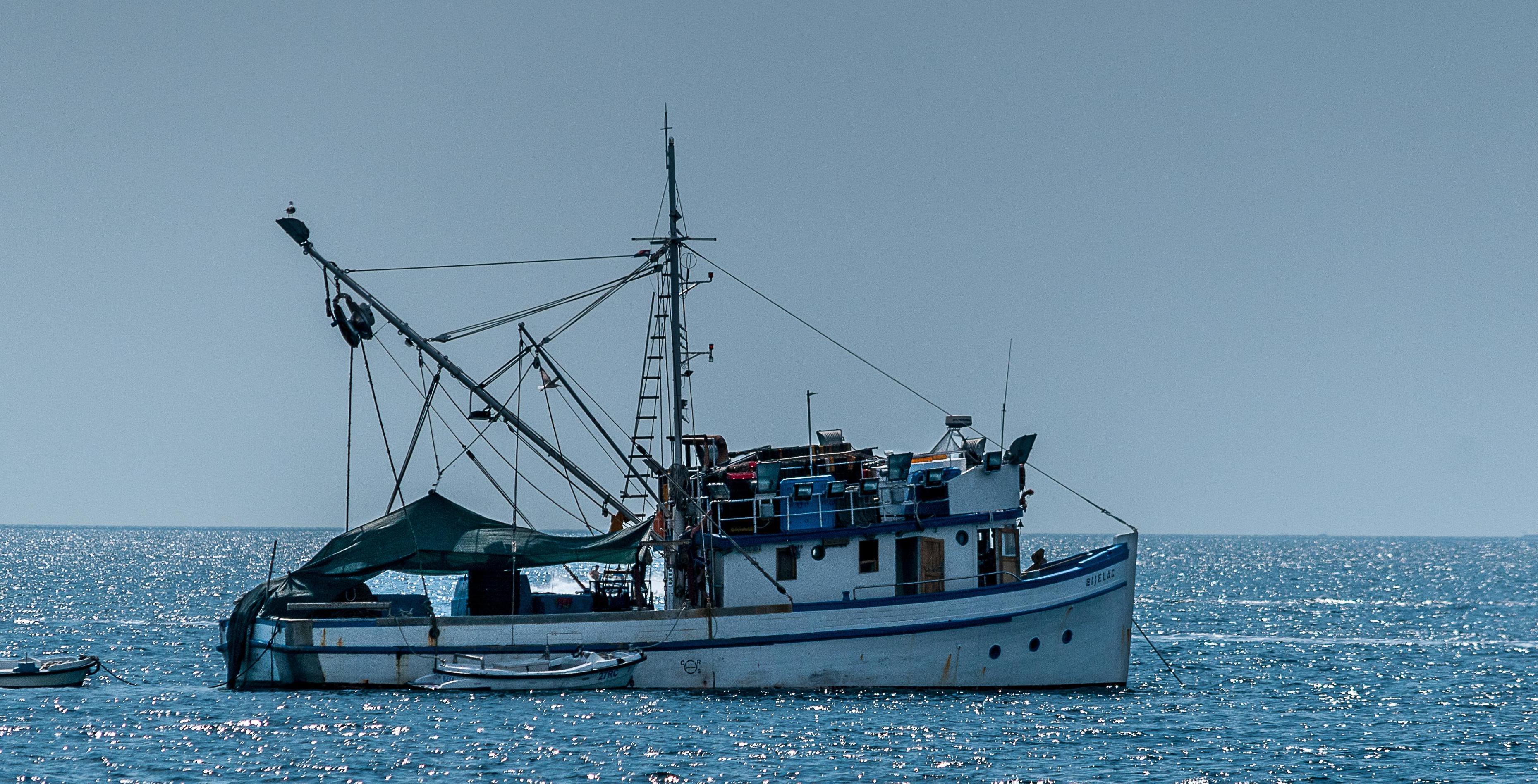 Una buona occasione lotta agli sprechi chi spreca e perch for Circle fishing boat